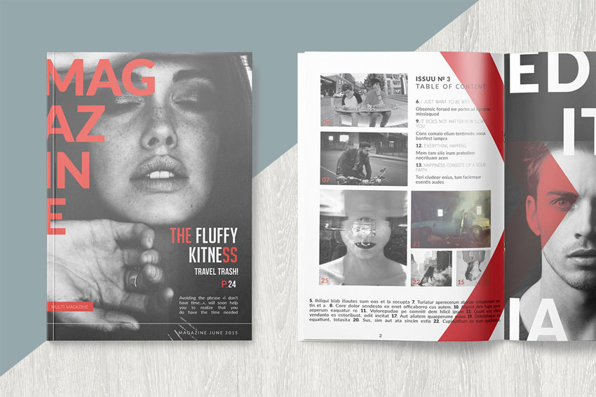 Professional Magazine InDesign Template
