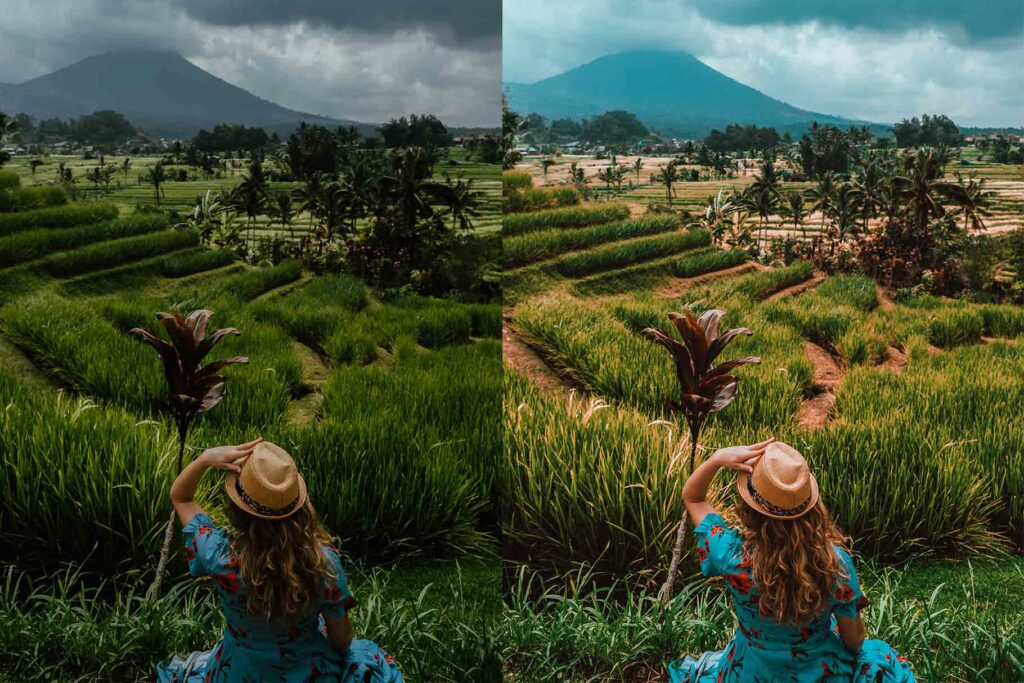 Free Orange Lightroom Mobile DNG Preset for instagram