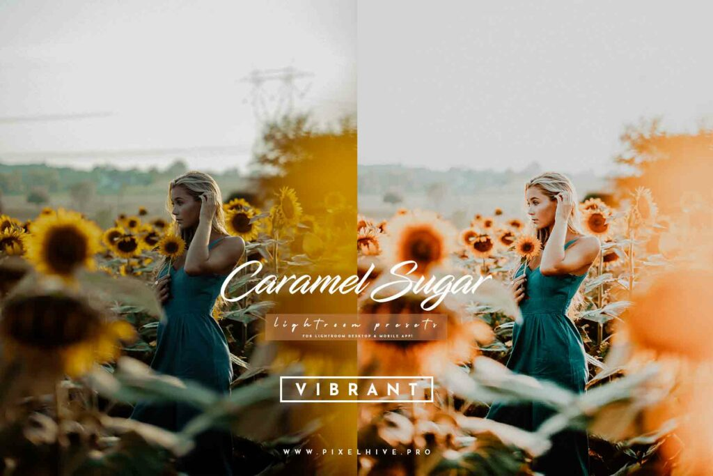 Free Vibrant Lightroom Mobile DNG Preset for instagram