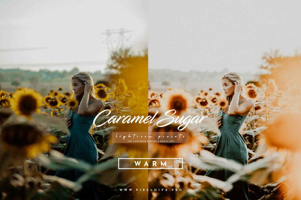 Free Warm Lightroom Mobile DNG Preset for instagram